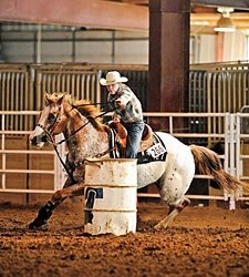 FL Court Denies Barrel Racing Ban Rehearing