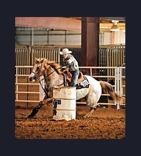 Judge Rules Barrel Racing in Violation of Law - BloodHorse