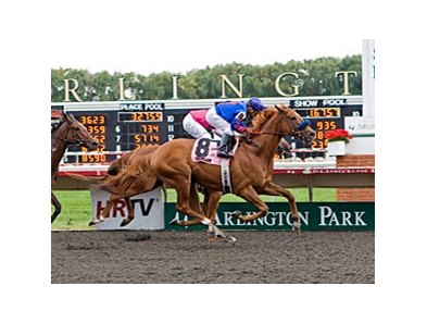 Mister Marti Gras won the 2011 Washington Park Handicap.