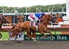 Mister Marti Gras won the Washington Park Handicap in 2011.