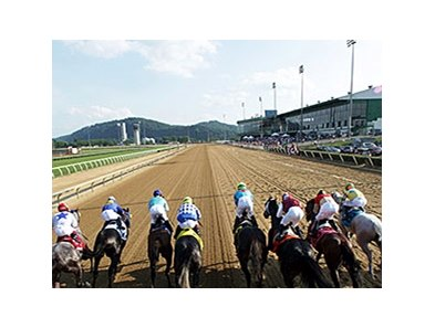 Mountaineer Casino & Racetrack Resort