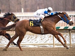 Russell Road has won the West Virginia Breeders' Classic Stakes twice.
