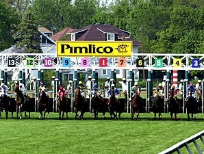 Growth in Export Handle Helps Pimlico Meet