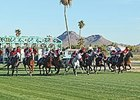 Racing at Turf Paradise.