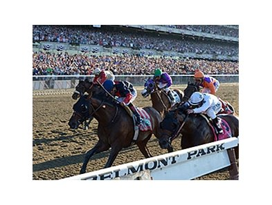 "<br><a target=""blank"" href=""http://photos.bloodhorse.com/TripleCrown/2014-Triple-Crown/Belmont-Stakes-146/i-M3tqgLk"">Order This Photo</a>"
