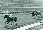 Native Diver winning the 1965 Hollywood Gold Cup.