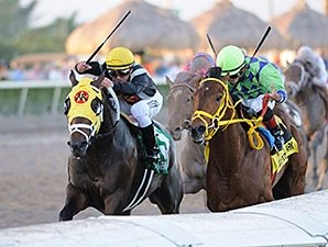Florida Derby Likely to Rematch Top FOY Foes