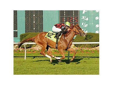 Testa Rossi comes home strong to win the Florida Oaks at Tampa Bay Downs.