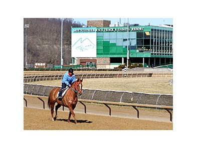 Mountaineer Park
