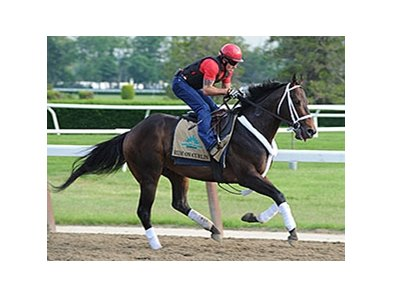 "Ride On Curlin<br><a target=""blank"" href=""http://photos.bloodhorse.com/TripleCrown/2014-Triple-Crown/Belmont-Stakes-146/i-6fp7GNw"">Order This Photo</a>"