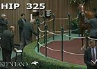 Keeneland September: Hip 325 - Sale Ring