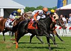 Ben's Cat winning the 2013 Jim McKay Turf Sprint.