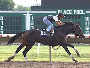 Spendthrift to Stand Itsmyluckyday in 2015
