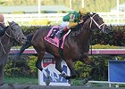 "Palace Malice won the 2014 Gulfstream Park Handicap. <br><a target=""blank"" href=""http://photos.bloodhorse.com/AtTheRaces-1/At-the-Races-2014/35724761_2vdnSX#!i=3112265326&k=NhwzNDM"">Order This Photo</a>"