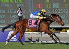 "Irish-bred Chriselliam won the Breeders' Cup Juvenile Fillies Turf.<br><a target=""blank"" href=""http://photos.bloodhorse.com/BreedersCup/2013-Breeders-Cup/Juvenile-Fillies-Turf/33149817_jvHmZP#!i=2876862243&k=kf5LzxW"">Order This Photo</a>"