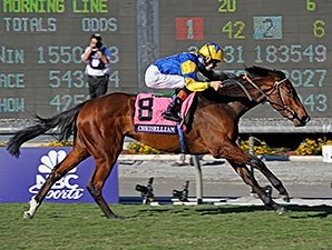 Irish-bred Chriselliam won the Breeders' Cup Juvenile Fillies Turf.