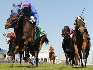 Something Extra will attempt to capture the Connaught Cup for a third consecutive time at Woodbine on May 31.