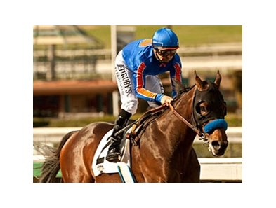 Game On Dude won the San Antonio in 2012 and 2013.