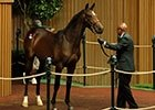 Keeneland September Sale 2013: Day 2 Wrap-Up