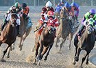 "Vicar's in Trouble (center) takes control as they enter the stretch in the Lecomte.<br><a target=""blank"" href=""http://photos.bloodhorse.com/AtTheRaces-1/At-the-Races-2014/35724761_2vdnSX#!i=3029260023&k=RJ5BXmX"">Order This Photo</a>"