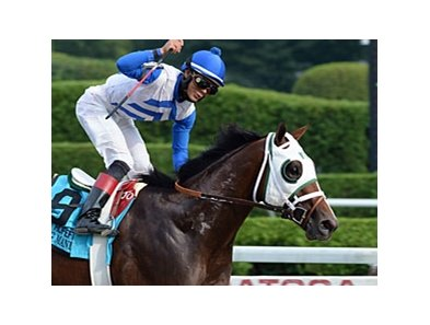 "Strong Mandate won the 2013 Hopeful Stakes. <br><a target=""blank"" href=""http://photos.bloodhorse.com/AtTheRaces-1/at-the-races-2013/27257665_QgCqdh#!i=2740033852&k=gM83vv4"">Order This Photo</a>"
