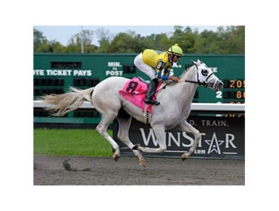 "Hansen<br><a target=""blank"" href=""http://www.bloodhorse.com/horse-racing/photo-store?ref=http%3A%2F%2Fpictopia.com%2Fperl%2Fgal%3Fprovider_id%3D368%26ptp_photo_id%3D9679200%26ref%3Dstory"">Order This Photo</a>"