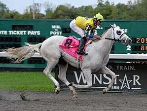 Hansen wins the 2011 Kentucky Cup Juvenile at Turfway Park by almost 14 lengths.