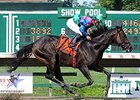 Itsmyluckyday Draws Clear in Salvator Mile