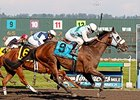 Stryker Phd faces 8 in the Berkeley Handicap.