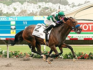 Iotapa won the 2014 Clement L. Hirsch Stakes.
