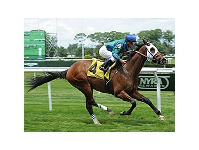 "Kharafa comes home strong to win the Kingston Stakes.<br><a target=""blank"" href=""http://photos.bloodhorse.com/AtTheRaces-1/At-the-Races-2014/i-bm3ZnPx"">Order This Photo</a>"