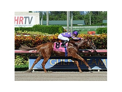 "Sing Praises is the likely favorite in the Dr. Fager for males. <br><a target=""blank"" href=""http://photos.bloodhorse.com/AtTheRaces-1/At-the-Races-2014/i-PP3xn4K"">Order This Photo</a>"