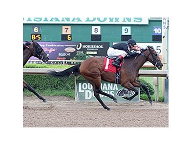 Among the Coteau Grove horses in the sale is stakes winner Afternoon Tango, who won the 2014 Louisiana Cup Filly and Mare Sprint Stakes.