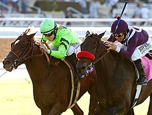 Home Run Kitten (left) gets up late to win the Eddie D. over Ambitious Brew.
