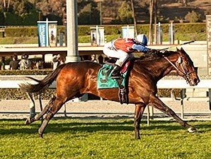 Winning Prize bounds home to win the Arcadia Stakes.