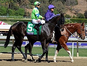Paolucci Moves Ria Antonia to Baffert