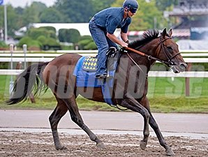 Bayern at Saratoga on August 22.