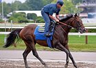 "Bayern at Saratoga on August 22.<br><a target=""blank"" href=""http://photos.bloodhorse.com/AtTheRaces-1/At-the-Races-2014/i-CBHBTKV"">Order This Photo</a>"