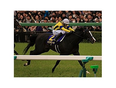 Isla Bonita wins Japan's Satsuki Sho.