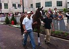 Untapable Schools in the Paddock