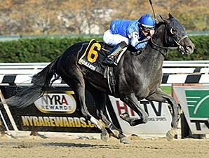 Romansh won the 2013 Discovery Handicap. Order This Photo