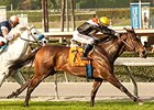 Pontchatrain Adds to Win Skein in Buena Vista