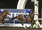 Barbecue Eddie Breaks Through at Meydan