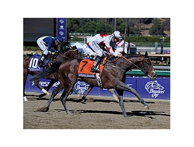 "London Bridge won the 2013 Breeders' Cup Marathon.  <br><a target=""blank""http://photos.bloodhorse.com/BreedersCup/2013-Breeders-Cup/Marathon/33148158_pgQmsx#!i=2877793711&k=6WFWNBg"">Order This Photo</a>"