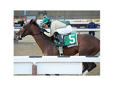 "Samraat<br><a target=""blank"" href=""http://photos.bloodhorse.com/AtTheRaces-1/At-the-Races-2014/35724761_2vdnSX#!i=3053689911&k=mwCwStt"">Order This Photo</a>"