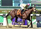 "Belle Gallantey won the 2014 Beldame. <br><a target=""blank"" href=""http://photos.bloodhorse.com/AtTheRaces-1/At-the-Races-2014/i-c2GzQqx"">Order This Photo</a>"