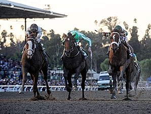 The 2013 Breeders' Cup Classic.