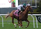 Five Iron upsets the Fort Marcy Stakes at Belmont Park.