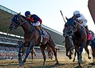 "Tonalist won the 2014 Belmont Stakes. <br><a target=""blank"" href=""http://photos.bloodhorse.com/TripleCrown/2014-Triple-Crown/Belmont-Stakes-146/i-8fVj8z6"">Order This Photo</a>"