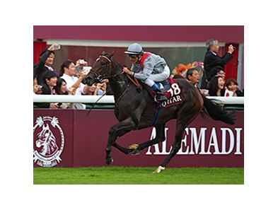 "Treve is set to make her highly anticipated 2014 debut  April 26 in the Prix Ganay at Longchamp. <br><a target=""blank"" href=""http://photos.bloodhorse.com/AtTheRaces-1/at-the-races-2013/27257665_QgCqdh#!i=2814170332&k=cCX9dvP"">Order This Photo</a>"